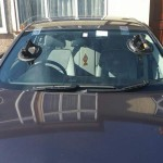 bmw windscreen replacement